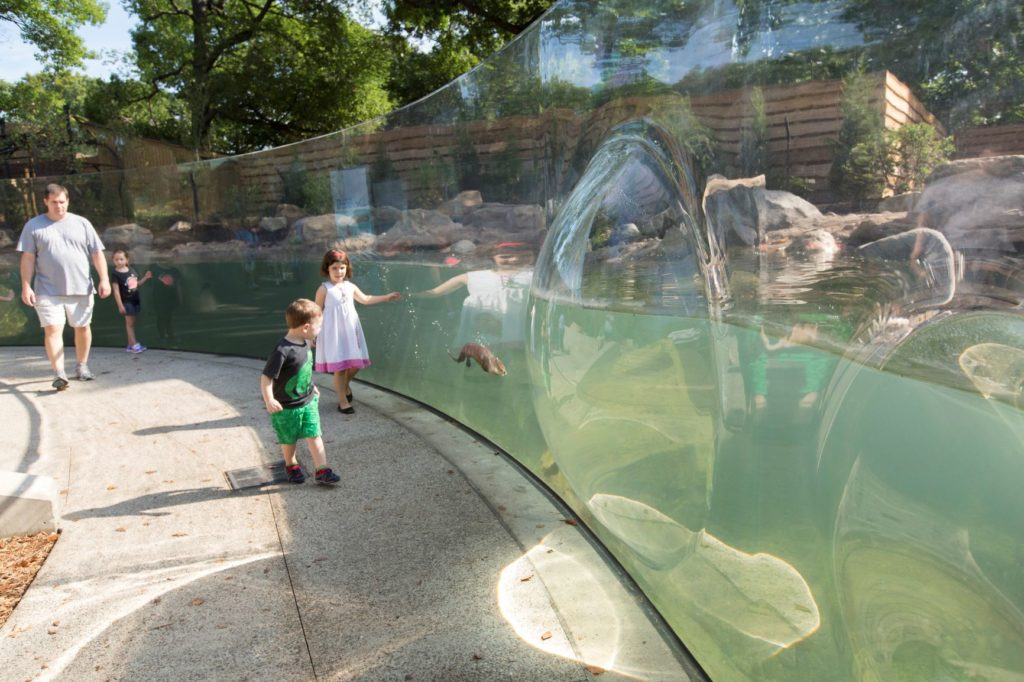 Children greet otters at the Perkins Wildlife Center.